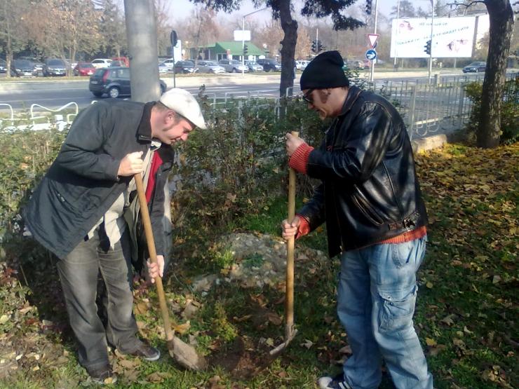 Day of the Tree, Koen and Sinisha, November, 2011