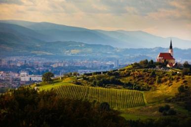 Wine_Maribor_Views
