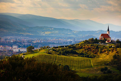 Wine_Maribor_Views