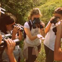 Важноста на потценетите професии : екологија