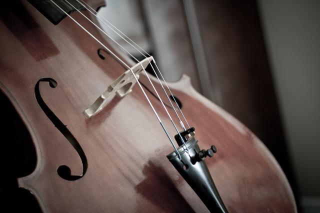 cello-110981