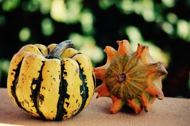 halloween-2890973_1920