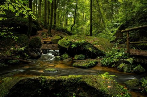 bench-cascade-creek-355321