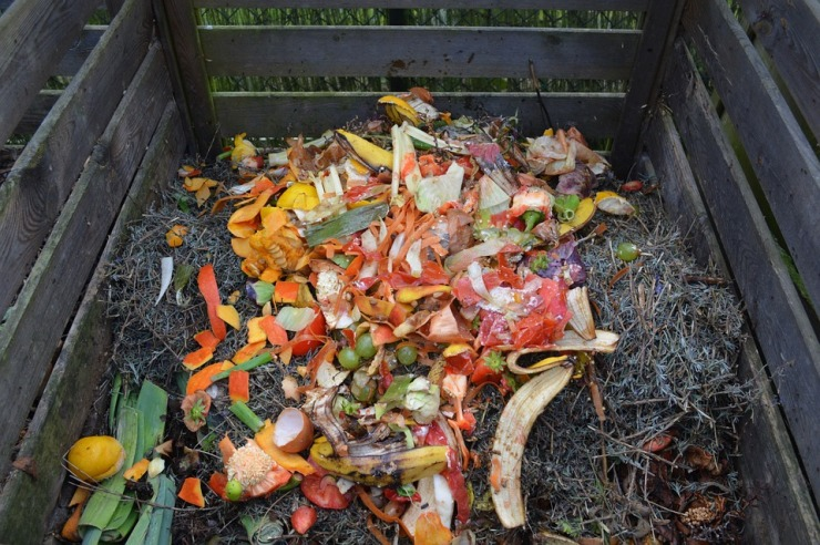 green-waste-513609_960_720