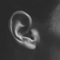 Tingulli i heshtjes