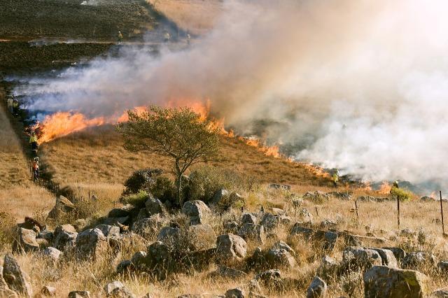 grass-fire-807388_1920